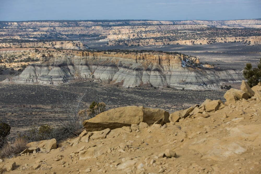 Unlocking Federal Lands Would Be Economic Boom for NM